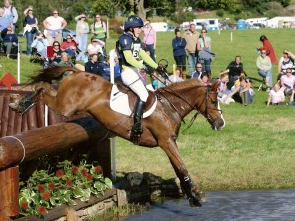 a study of eventing a horse event on three disciplines Was used to compare noseband tensions in each of the three disciplines of eventing, dres-  young and older event horses in the study the widespread use of tightness levels of less than .